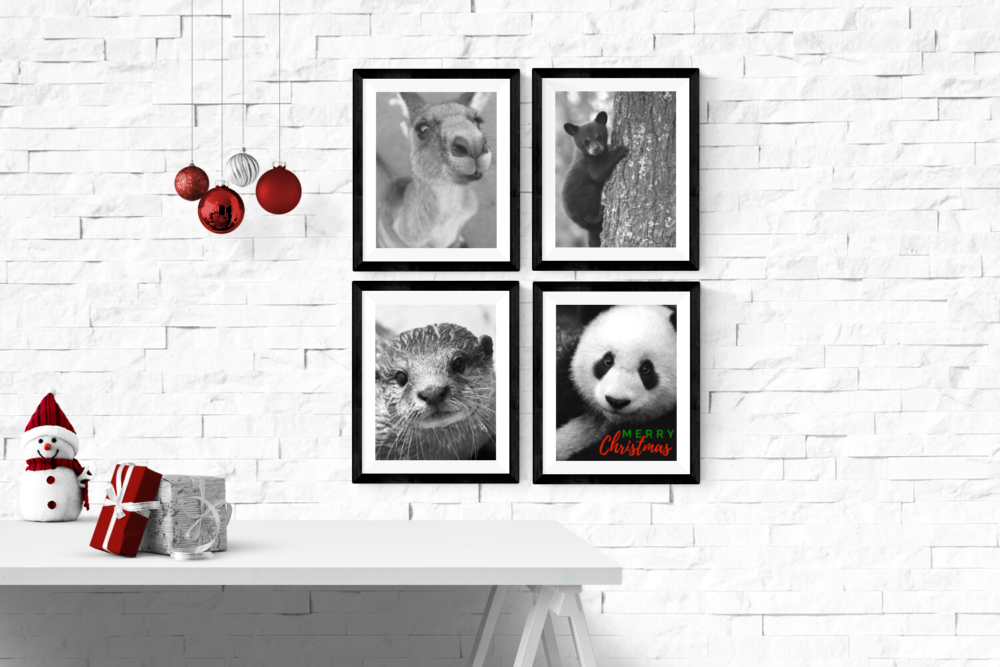 White brick wall showing 4 animals making up a Christmas poster.
